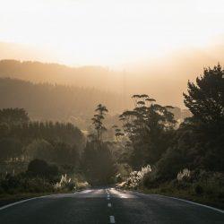 NZ Dawn